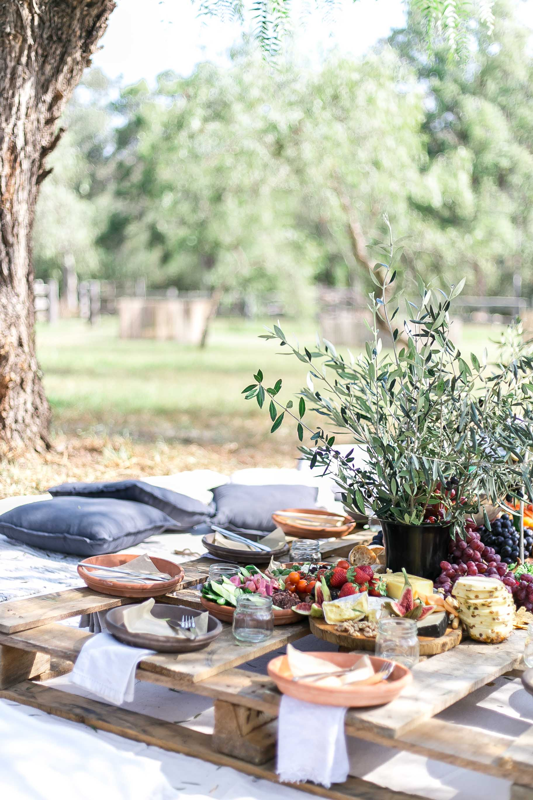 Cottonwood and Co - Wild Adventure Cookbook launch - summertime picnic