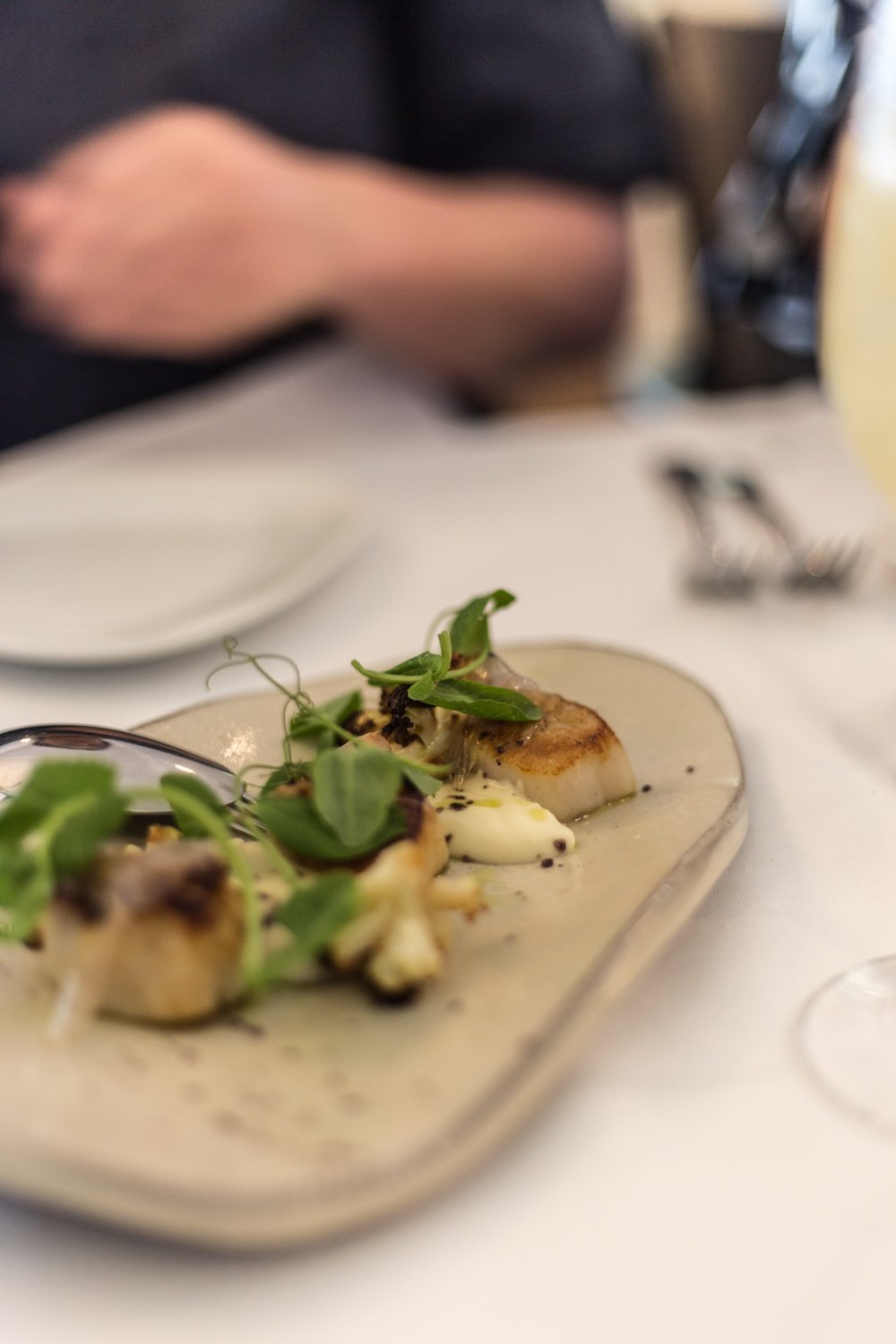 Cottonwood & Co - Seared scallops with cauliflower, guanciale, pea tendrils, roast garlic & anchovy, dining at Bells at Killcare